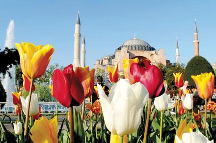 Почивка Фестивал на лалето 2019 в Истанбул <br> 2 нощувки с посещение на парка Емирган и църквата Св. Стефан  - <font color=green> ПРОМОЦИОНАЛНИ ЦЕНИ ВАЛИДНИ ЗА ЗАПИСВАНИЯ ДО 28.02.2019</font> <br> <font color=red> НЯМА НАЛИЧНИ МЕСТА!!! </font>